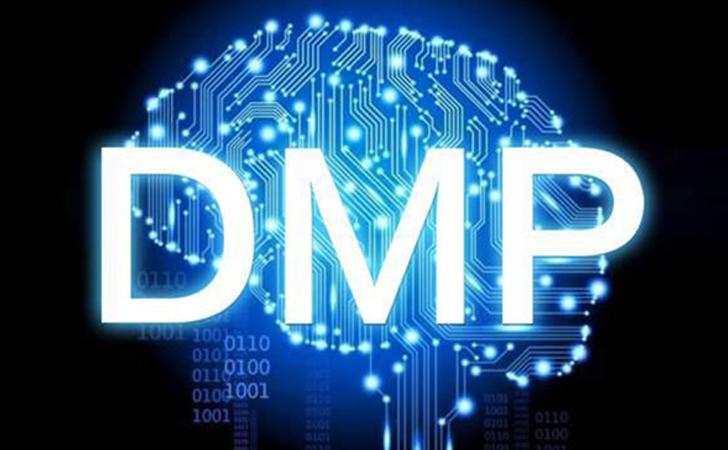什么是DMP?