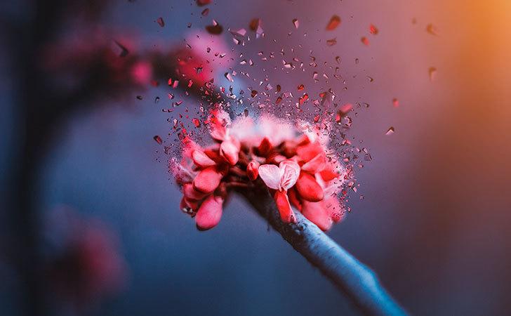 爱情也有生物的一面——神奇的苯乙胺,爱情兴奋剂