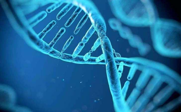 《基因革命》我们今天所做的事都有可能会改变我们基因的链条