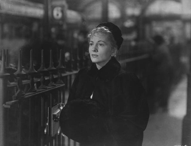 """茨威格的《一个陌生女人的来信》为何被评价为""""惊人的杰作""""?"""